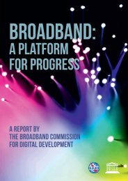 Broadband: A platform for progress - Paul Budde Communication