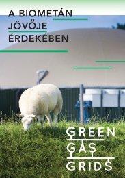 SEN225-5 WTK HU Flyer.indd - Green Gas Grids
