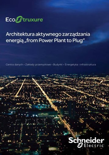 from Power Plant to Plug - Schneider Electric