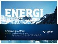 Øystein Moberg, BKK - Energi Norge