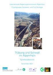 kostenloser Download - Zukunft Alpenrhein