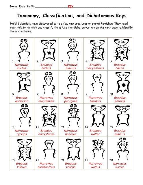Taxonomy Classification And Dichotomous Keys Fulton
