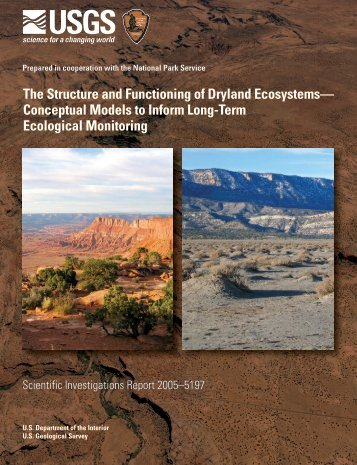 major structural and functional dynamics of a ecosystem
