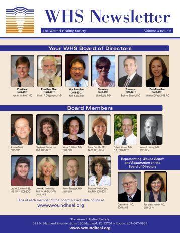 Wound Healing Society Newsletter Volume 3 Issue 2