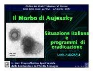 Aujeszky loris VR3.07.pdf - IZS della Lombardia e dell'Emilia ...