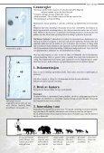 Spor og tegn - et hefte til hjelp i bestemmelse av store rovdyr - NINA - Page 4