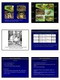 Insekten als Ursache allergischer Reaktionen - Seite 2