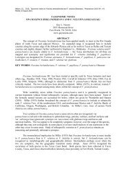 TAXONOMIC NOTES ON FRAXINUS ... - Phytoneuron