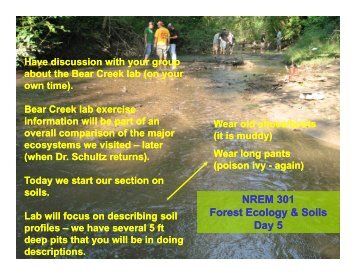 09-08-09 Intro Morphology - Natural Resource Ecology and ...