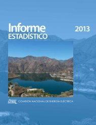 Informe estadistico 2013