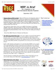 REEF-in-Brief - September 2005 - e-Newsletter of The Reef ...