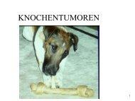 Knochentumoren (Lang)