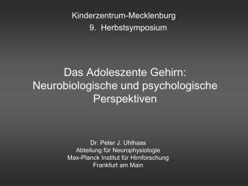 Late Development of GABAergic ... - Kinderzentrum Mecklenburg