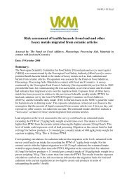 Risk assessment of health hazards from lead and other heavy ...