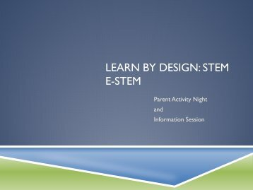 Learn by Design: STEM E-STEM