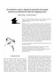 Do predators cause a change in passerine movement patterns as ...