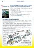 Eté 2013 - Villeneuve - Page 4
