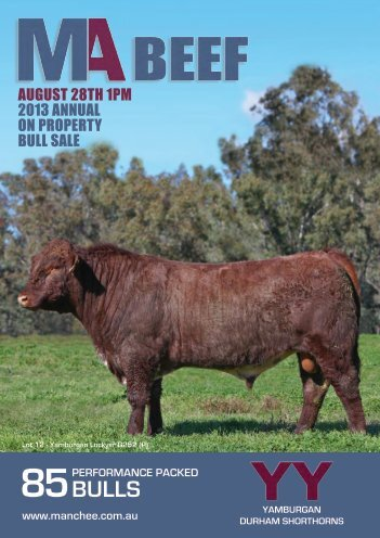 download the Bull Sale Catalogue - MANCHEE AG