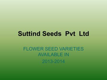 Suttind Seeds Pvt Ltd