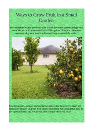 Ways to Grow Fruit in a Small Garden