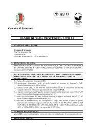 Comune di Scansano BANDO DI GARA PROCEDURA APERTA