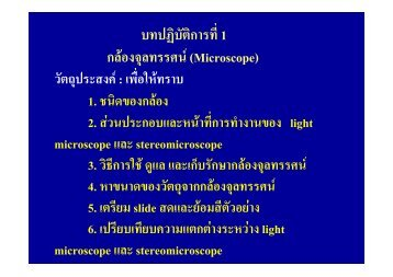 microscope%20lab
