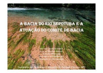 A bacia do Rio Sepotuba e a atuação do Comitê de Bacia PDF ...