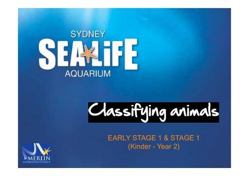Classifying Animals - Sydney Aquarium