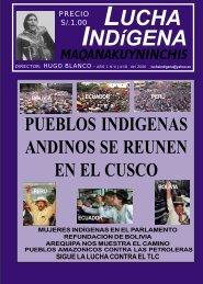 Lucha Indígena No. 4 PDF