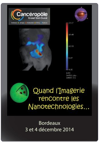 Workshop+Nano+et+Imagerie_3+et+4DEC14_Pré-programme_DIFF