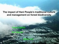 Holy forest - APAFRI-Asia Pacific Association of Forestry Research ...