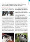 Orizzonti - ATRA - Page 5