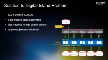 Solution to Digital Island Problem - SET