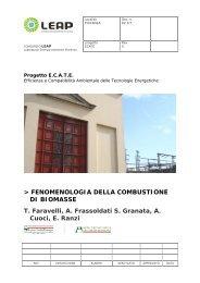 FENOMENOLOGIA DELLA COMBUSTIONE DI BIOMASSE T ... - LEAP