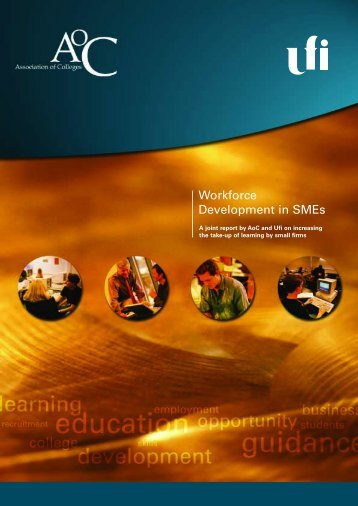 Workforce Development in SMEs - The Skills & Learning Intelligence ...