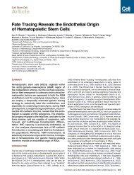 Fate tracing reveals the endothelial origin of hematopoietic stem cells.