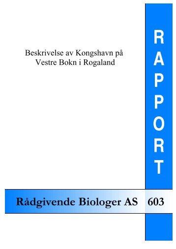 Beskrivelse av Kongshavn på Vestre Bokn i Rogaland - Rådgivende ...