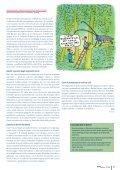 Formato - Codoc - Page 3