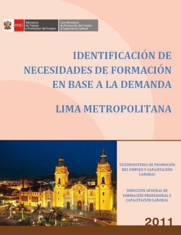 Identificación_de necesidades_Lima - Ministerio del Trabajo y ...