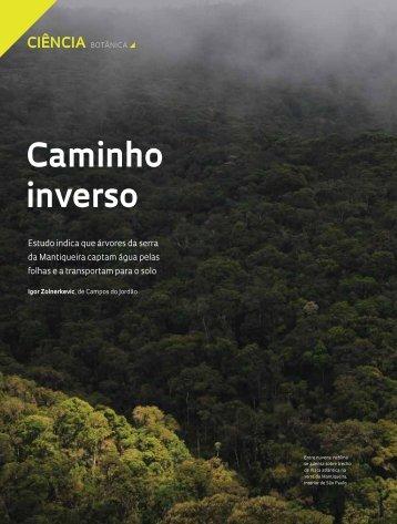 Caminho inverso - Revista Pesquisa FAPESP