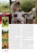 Daktari lebt – - DENTALSPECIALISTS - Seite 3