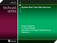 Sybase Real Time Data Services