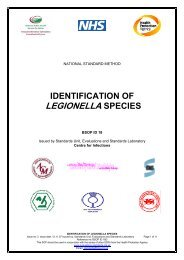 identification of legionella species