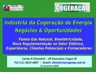 Indústria da Cogeração de Energia - Cogen