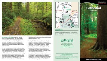 Cathedral - West Virginia State Parks
