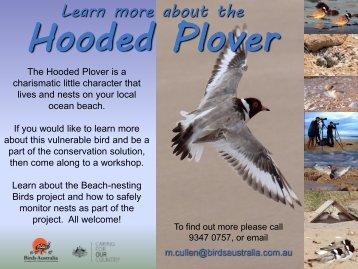 Workshop west flyers 2010