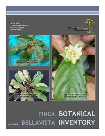 BOTANICAL INVENTORY - Finca Bellavista