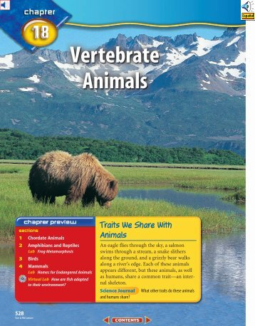 Chapter 18: Vertebrate Animals - Learning Services Home