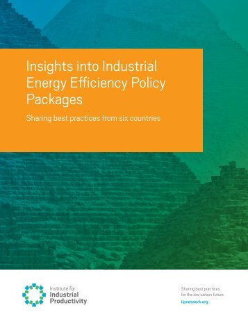 Insights into Industrial Energy Efficiency Policy Packages
