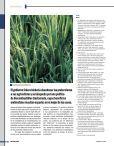 La lucha por la comida* - Revista Perspectiva - Page 4